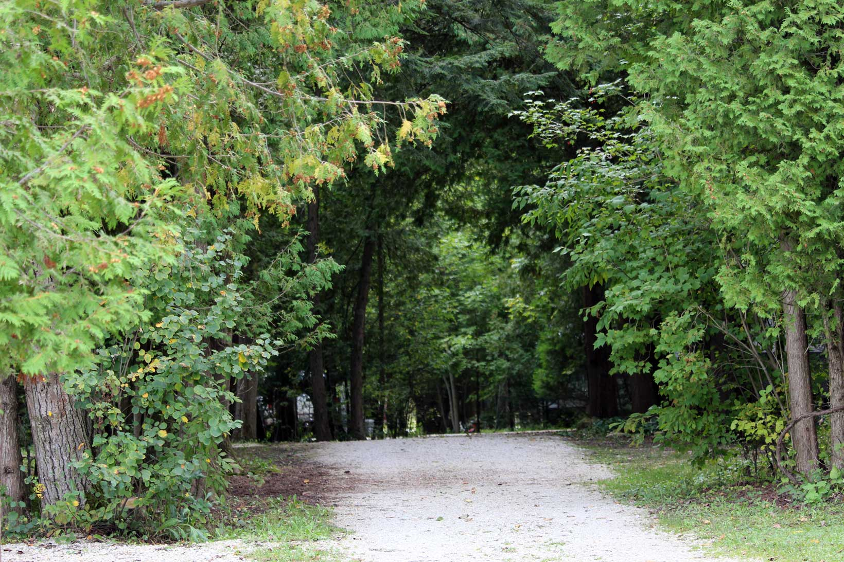 Timber Trail Campground rv sites Lake Michigan fishing Ahnapee State Trail Heated Swimming Pool